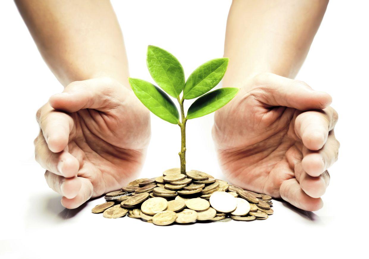 Как долгосрочные инвестиции помогают зарабатывать?